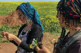 Djila Abdula em Rojava